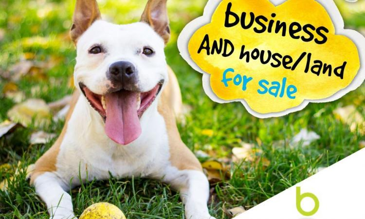 Vendor Motivated to Sell Home w Great Pet Boarding