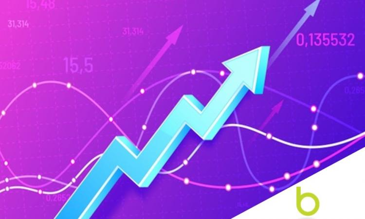 LOOK - Profitable Online Import / Distribution Biz