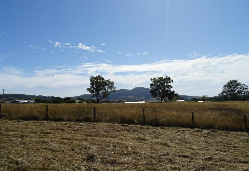 Move to the Country -In Peaceful Mount Alford