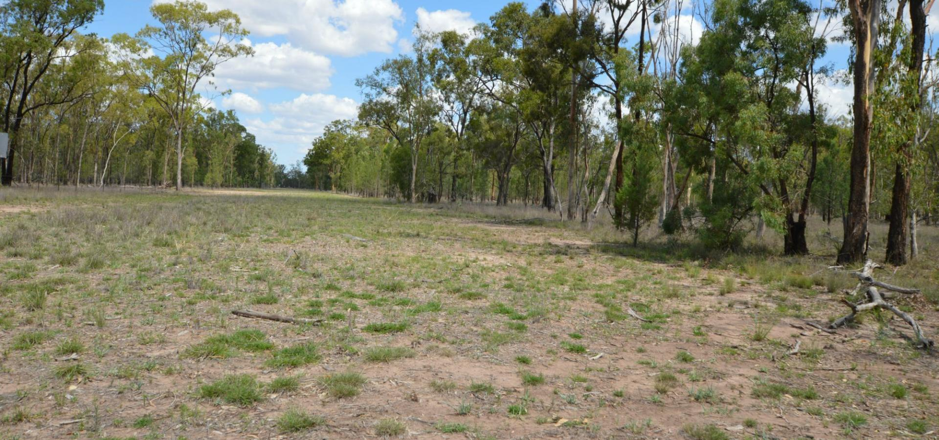 FLAT USEABLE LAND READY TO BUILD