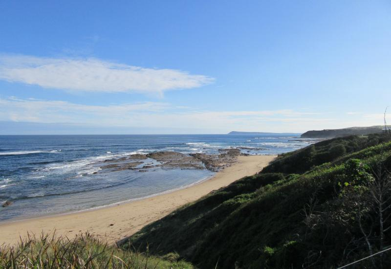 BEACH/OCEAN/PARK