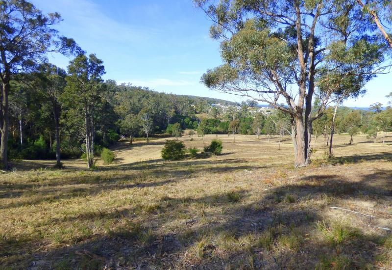 COVE HEIGHTS ~ LOT 284