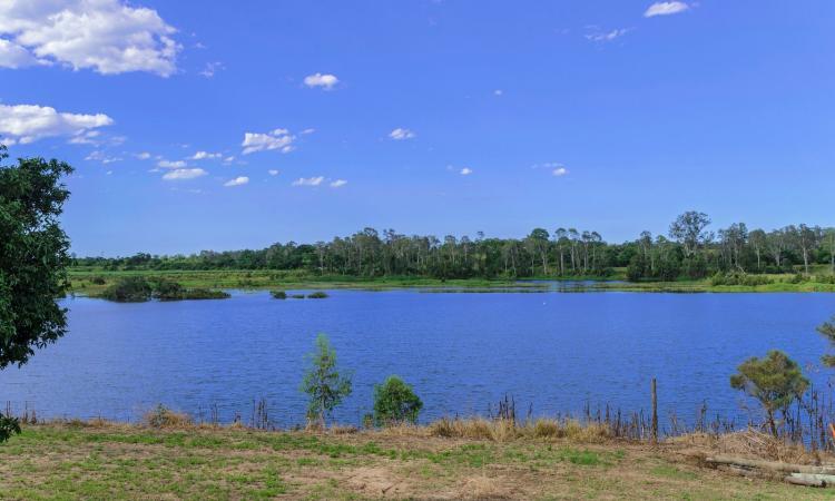 QUALITY FARM on the fresh water of Burnett River