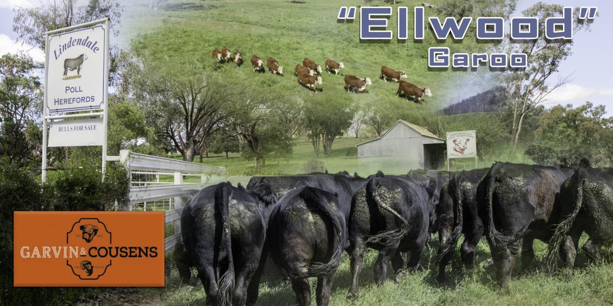 Ellwood Garoo