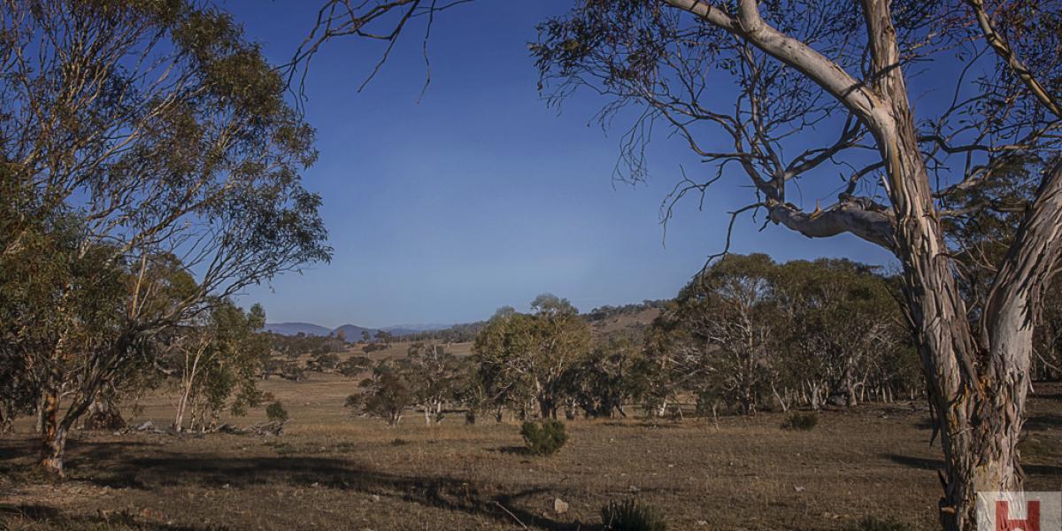 Exclusive Prime Land - Mountain views