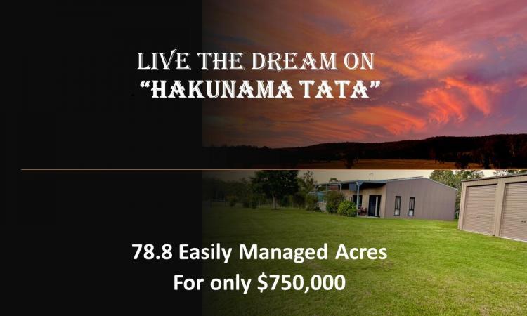 """Live the dream on """" """"Hakunama Tata"""""""