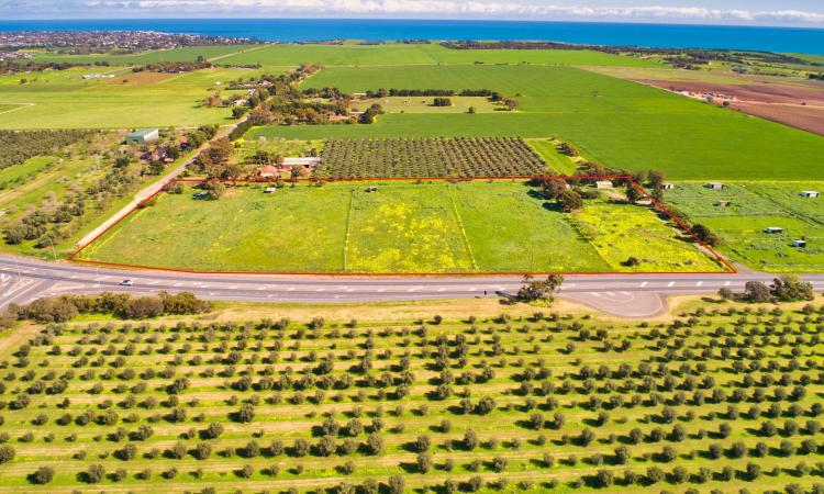 PRODUCT/ FARM LAND - 8 HA APPROX. (L)