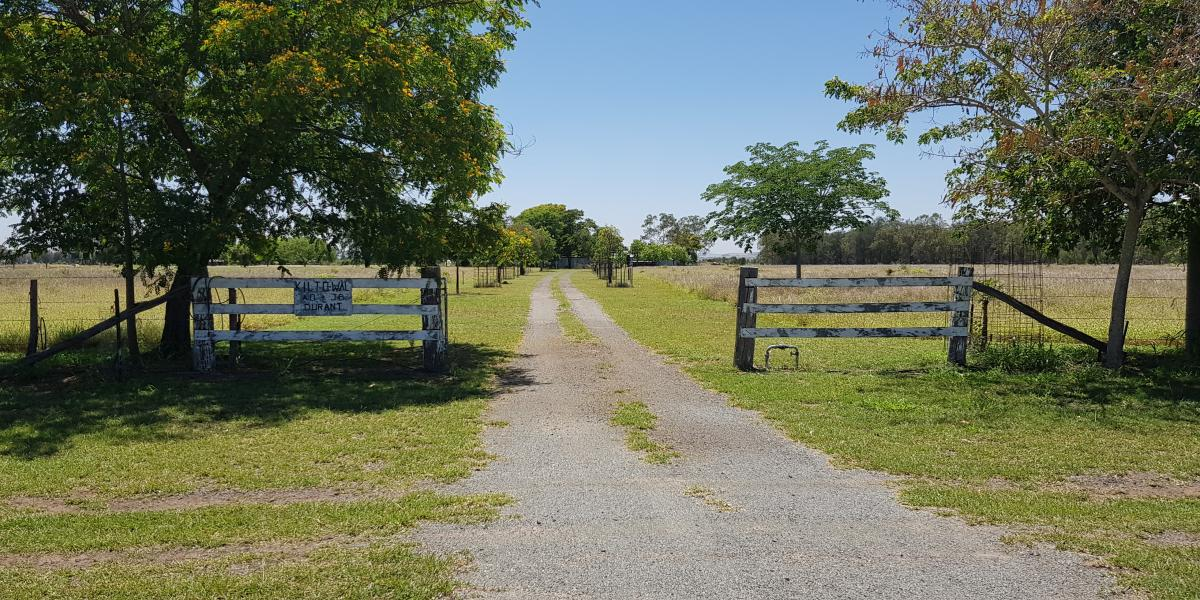 40 ACRES (APPROX)