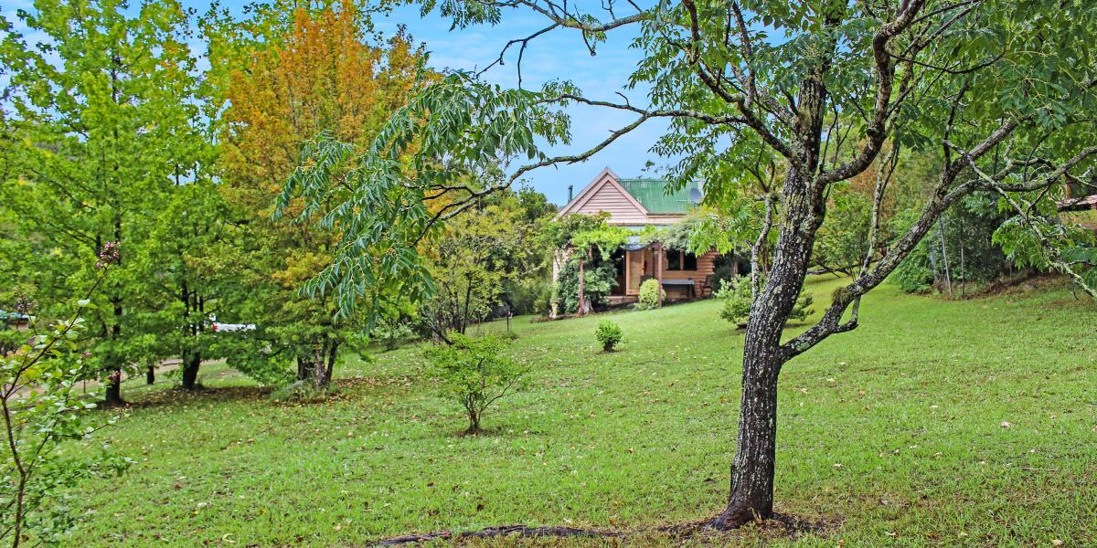 Unique Piece of History in The Beautiful Wollombi Valley