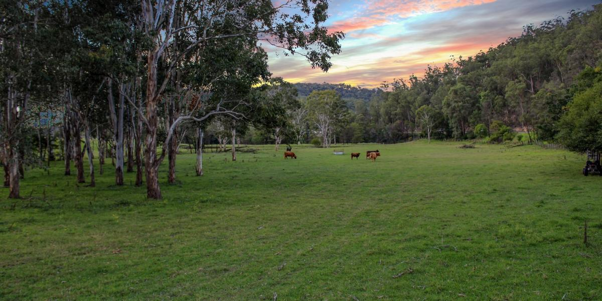 Pastured Weekender Acres Within Walking Distance to 'Historic Wollombi' Village
