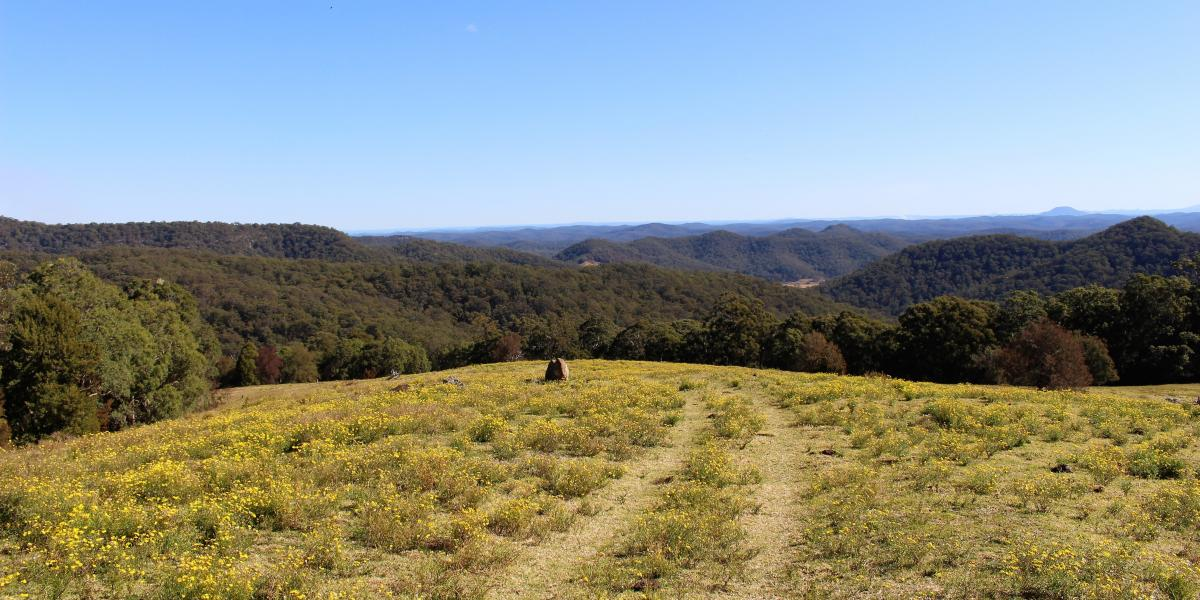 'King of the World' - Spectacular 147 Acre Rural Holding
