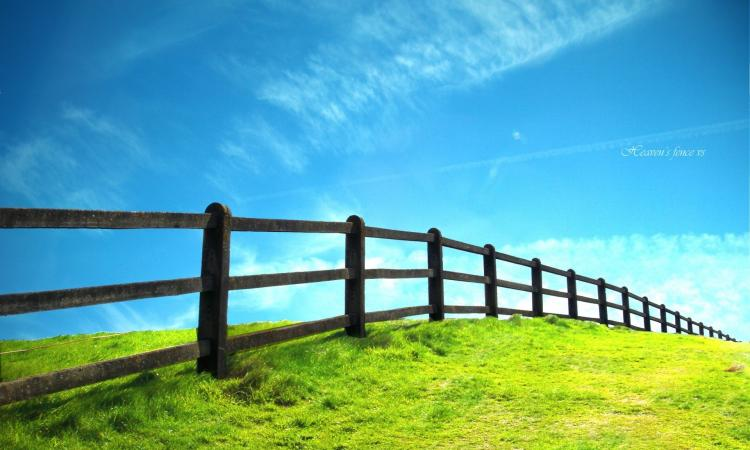 Rural Fencing Business