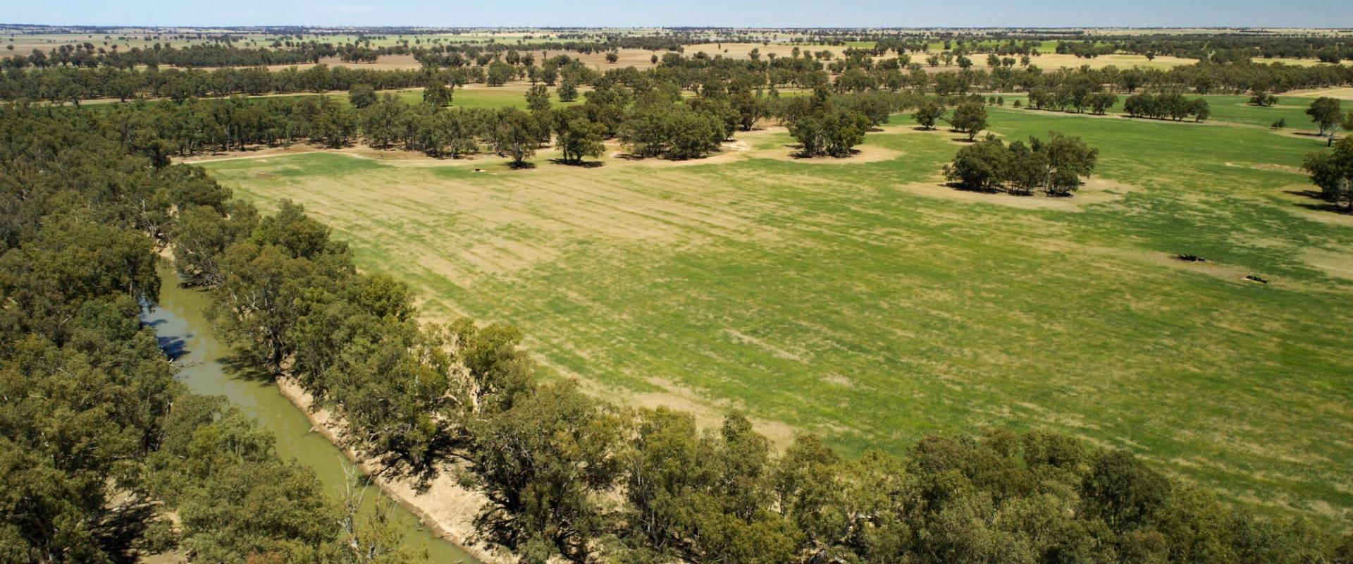Riverina Livestockts Pty Ltd Crofts   4 Km Old Man Creek Frontage Highway Frontage Irrigation Access Licence