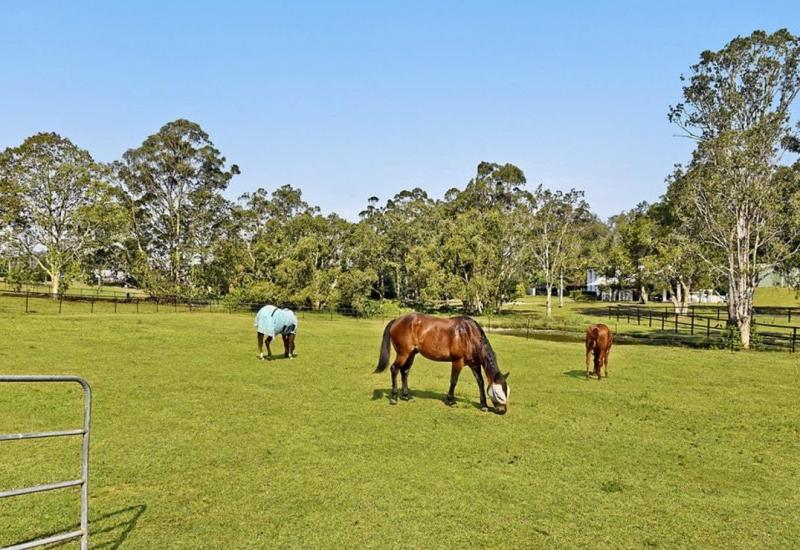 Tallai Rental, 3 brm/2 bath Family home with stables close Mudgeeraba Pony Club