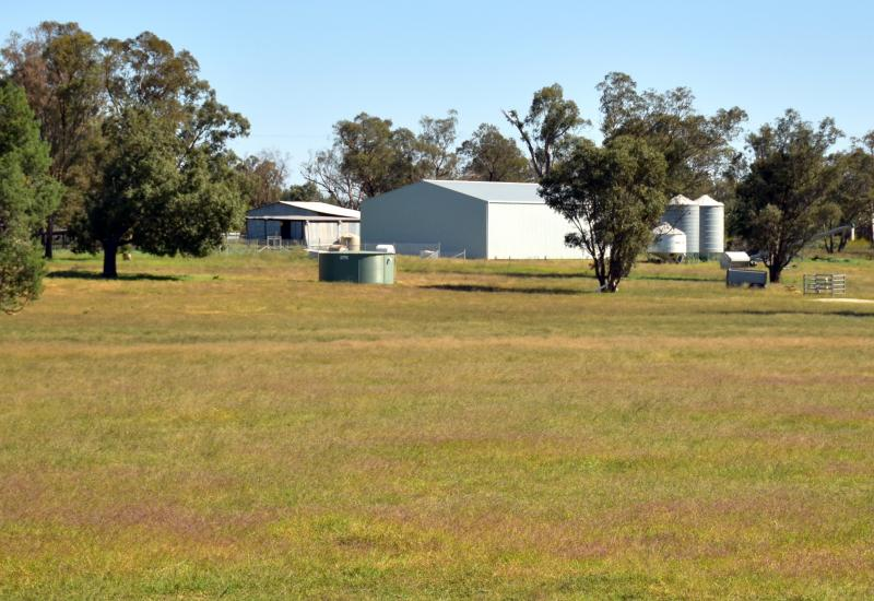 Mixed Farming Enterprise- Cropping & Grazing- $975 per acre
