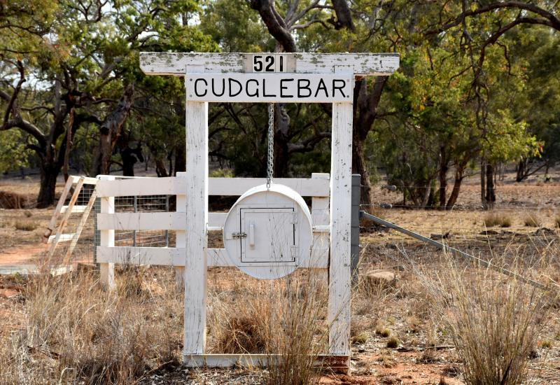 """AUCTION """"CUDGLEBAR"""" – COBBORA Cropping/Breeding Country + Picturesque Countryside"""