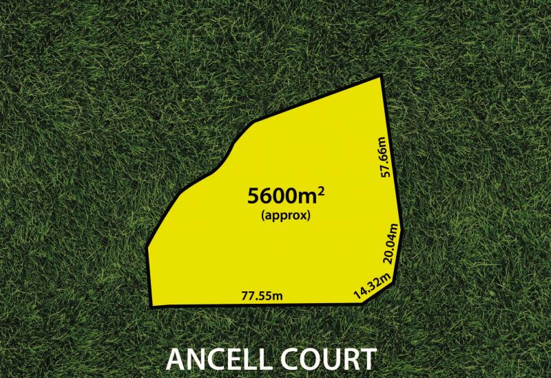 Incredible Land Holding of approx. 5,600sqm with Outstanding Potential