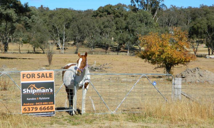 4 ACRES ON THE EDGE OF RYLSTONE VILLAGE!!
