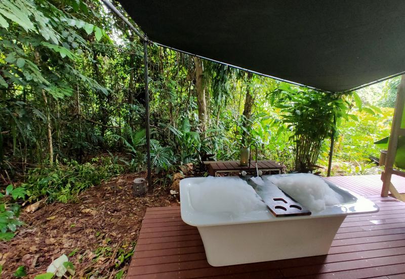 Artists Rainforest Getaway Complete with Outdoor Bath !