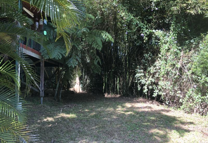 Tropical Serenity Kuranda Open For Inspection This Sun 11am to 2 pm