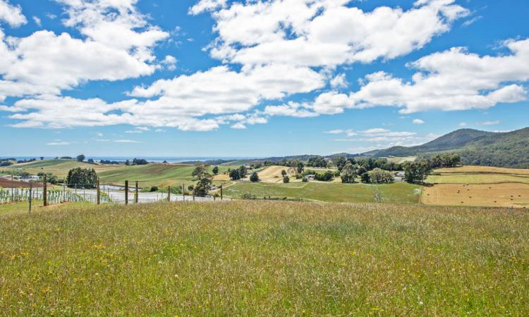 Impressive Acreage & Sweeping Ocean Views Just 10 Mins To Penguin.