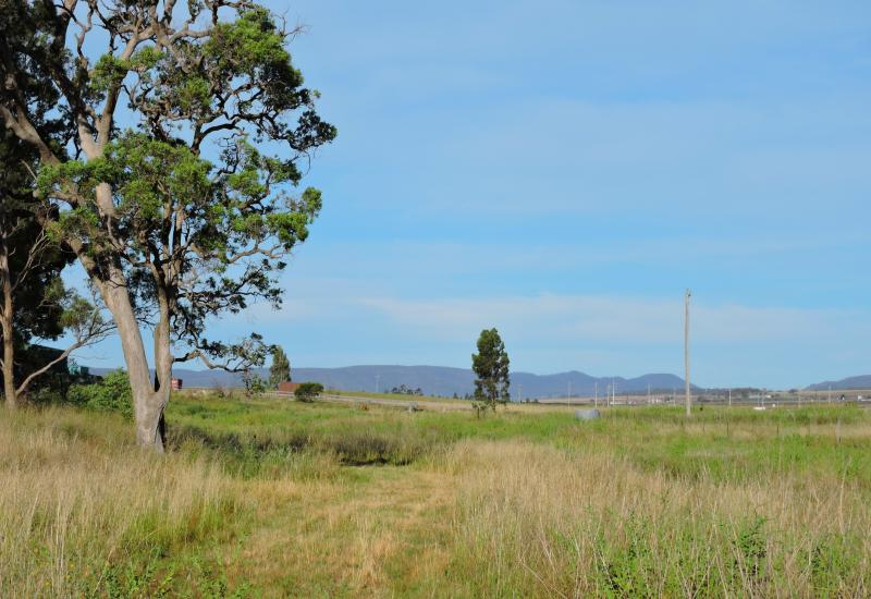 16.77 Acre Rural Lifestyle Block Close to CBD