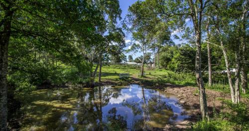 1 Acre Grazing Block - INVESTORS DELIGHT !